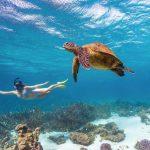 Coral Bay Tourism Western Australia Red Dirt 4WD Rentals