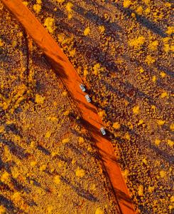 Golden Outback Western Australia