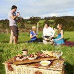 Picnic at Vasse Felix vineyard Tourism Western Australia Red Dirt 4WD Rentals
